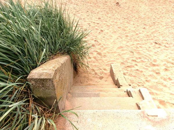 Beach Sand Stairs Stone Plants Dundee Broughty Ferry