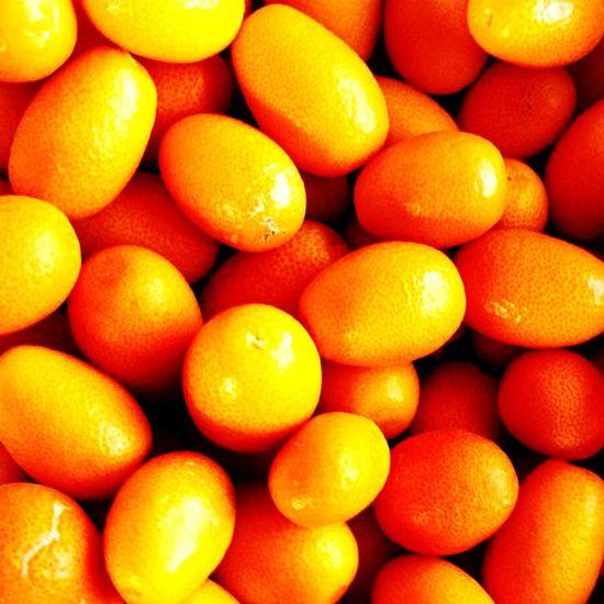 Orange fruity fresh Spain