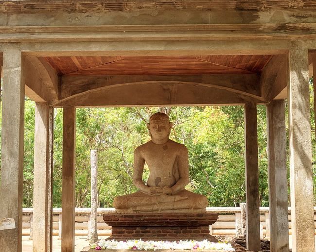 Statue of buddha against trees