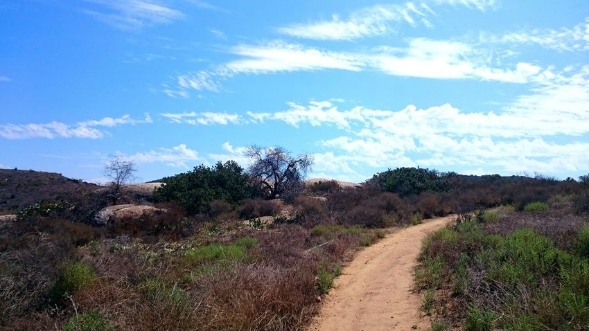 The road less traveled Hiking Hiking Trail The Great Outdoors Blue Sky In The Wild Roughing It Nature Natural Beauty
