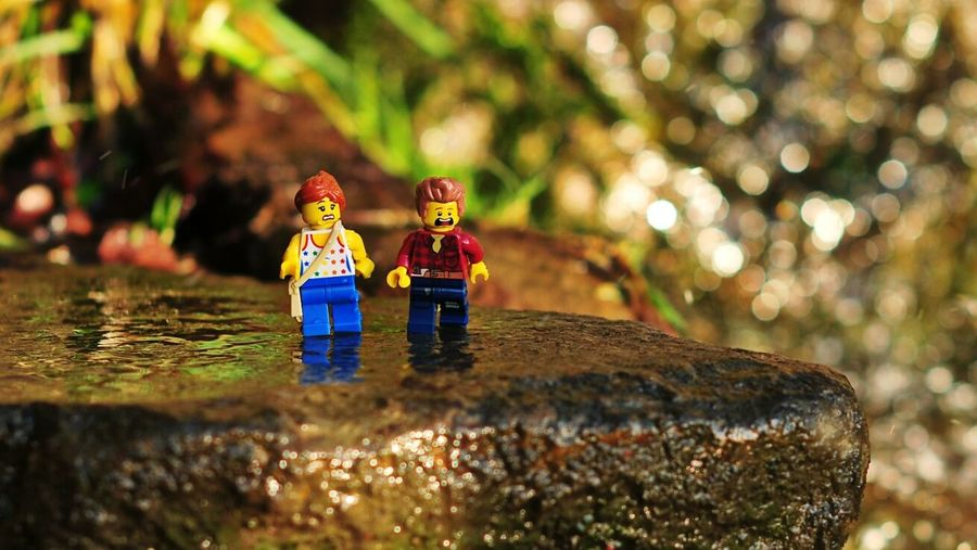 Legophotography Minimodels LEGO Legoart 50mm Creative Photography Little Tings BIG World Big World Nature Photography