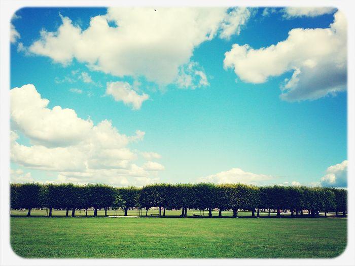 用手機拍就很美的草原