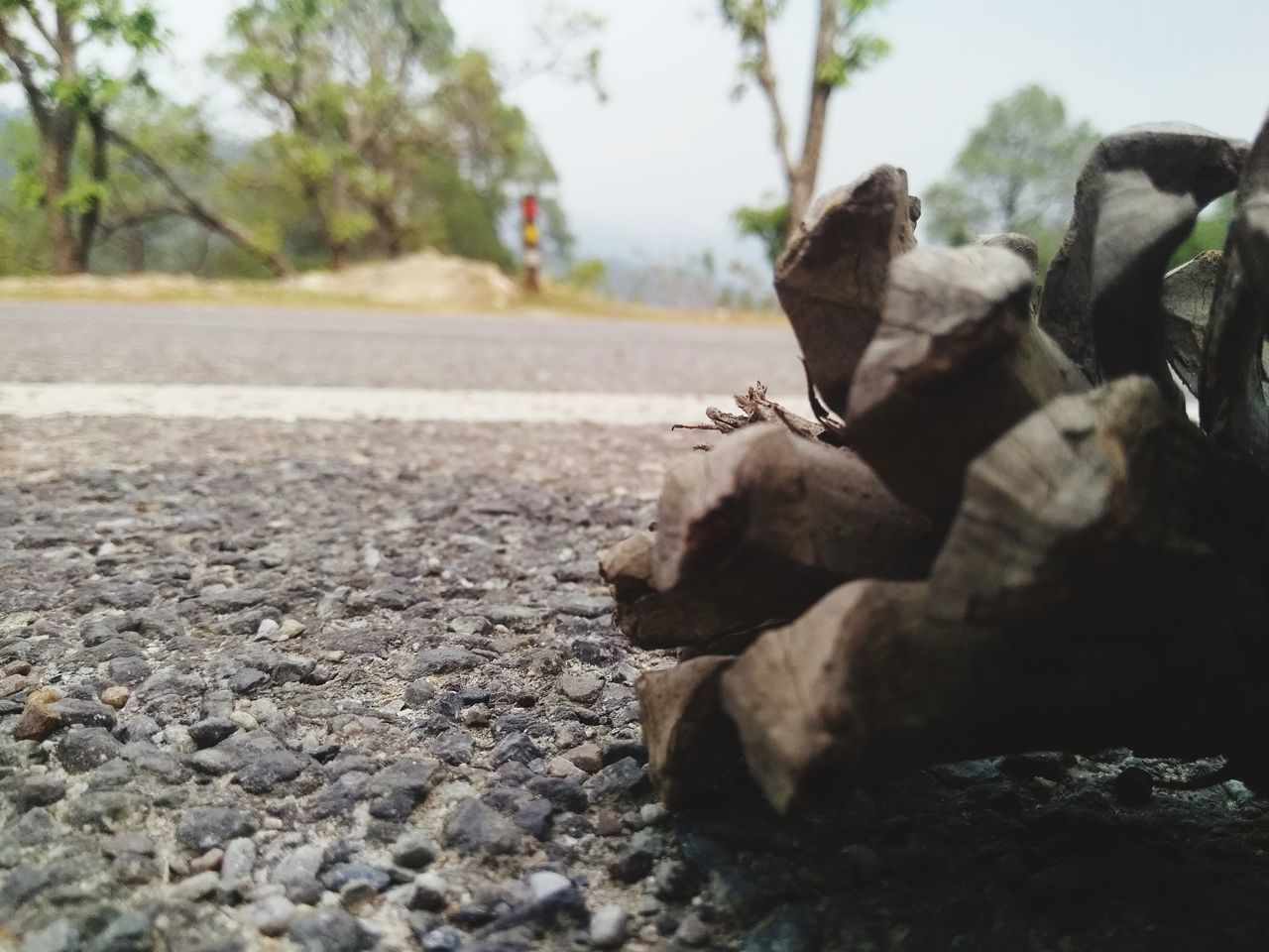 CLOSE-UP OF ROCKS ON ROAD