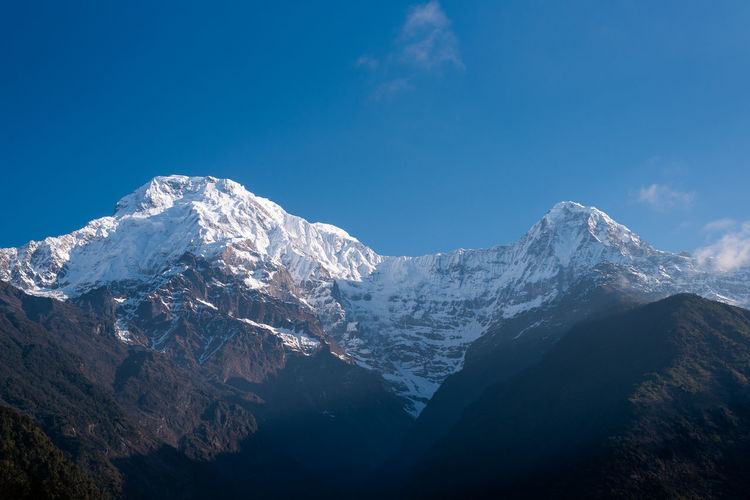 Annapurna south peak Mountain Mountain Range Cold Temperature Snow Mountain Peak Snowcapped Mountain Landscape Nature Winter Tranquility Outdoors Annapurna Annapurna Conservation Area Trekking Trail Nepal Travel Nepal Travel Environment Beauty In Nature Snow Mountain Himalayas Himalaya Mountain View Mountain Ridge Pokhara Pokhara, Nepal Clear Sky Stay Out