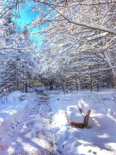 Herrliche Schneewanderung Snowwander Königfeld Wanderlust Winter Wonderland