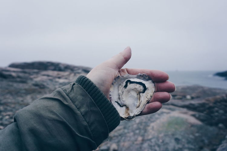 hand holding a oyster shell Human Body Part One Person Human Hand Outdoors Day One Man Only Only Men Adults Only People Beach Close-up Adult Sky Oyster  Oysters On The Half Shell Oyster Shell Winter Sweden Tjurpannan Adventure Water Beauty In Nature Ocean Nature Reserve Scenery The Great Outdoors - 2017 EyeEm Awards