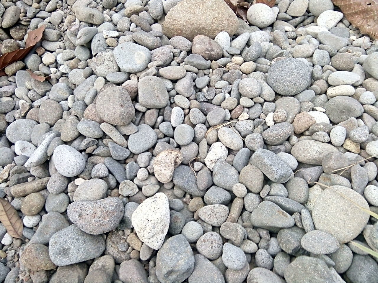 pebble, pebble beach, beach, stone - object, large group of objects, full frame, backgrounds, shore, nature, abundance, outdoors, no people, day, close-up
