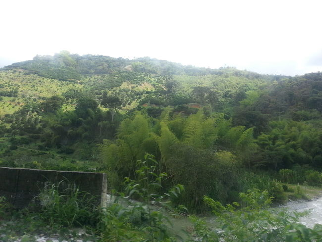 On The Road Colombia Es Bella Things That Are Green Taking Photos