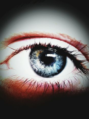 Beauty Blue My Eye Blue Eyes Mirror Of The Soul First Eyeem Photo