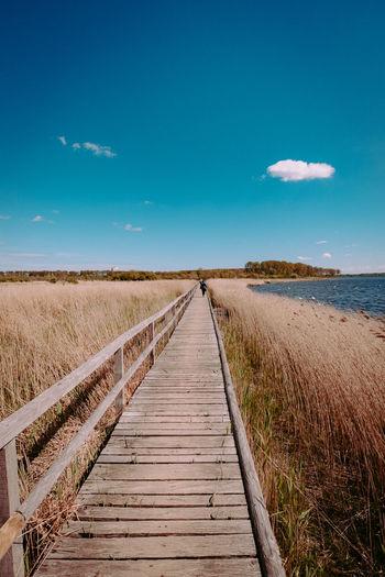 Boardwalk leading towards landscape against blue sky