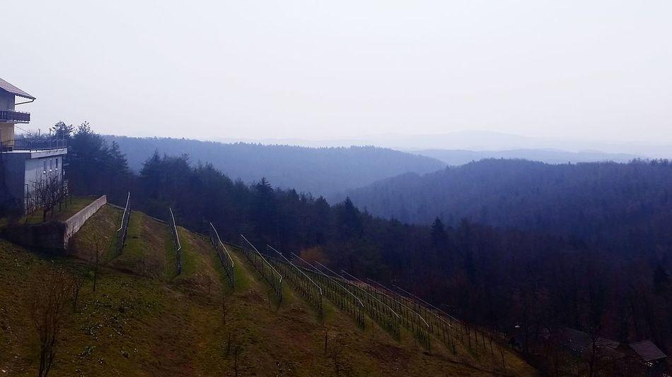 Nature Landscape Slovenia