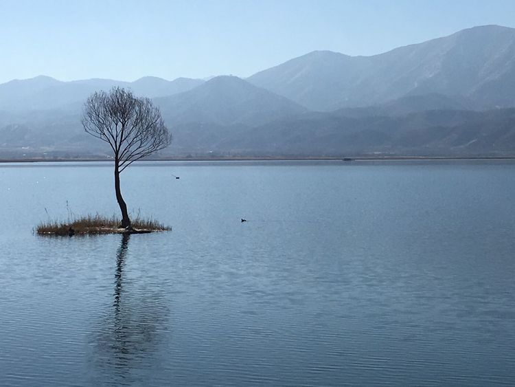 IranNature Iran Zarivar_lake IPhone Photography Landscape Irantravel