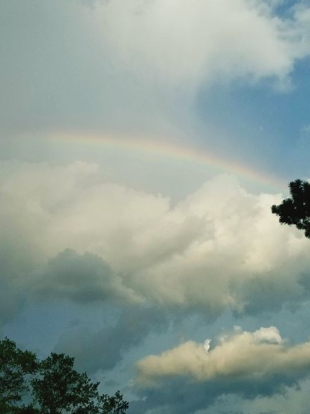 Rainbow Cloud - Sky Double Rainbow Weather Tree Natural Phenomenon Spectrum No People Mountain Sky Nature Multi Colored Storm Cloud Day Outdoors Forest Beauty In Nature Refraction