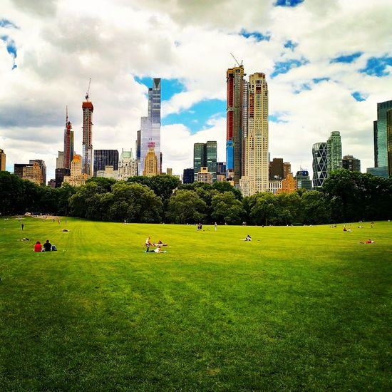 Green Field NYC Park Outdoors Central Park New York Manhattan City Cityscape Urban Skyline Tree Modern Skyscraper Sky Architecture Grass