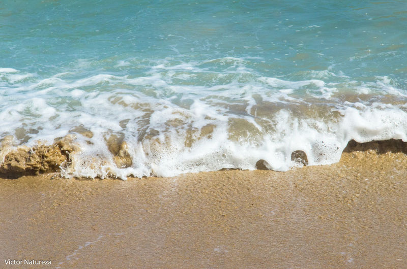 Beach Water Nature Fotografiaautoral Beauty Brazil Brasil Travel Destinations Paz Artefotografia Victornatureza Vitaonatureza Paraty Tranquility Summer Beauty In Nature Nature