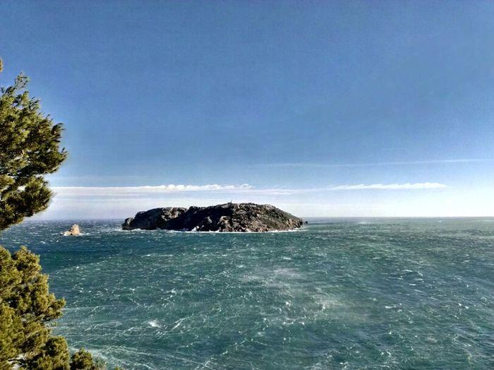 Nature Girona Costa Brava Illes Medes Estartit