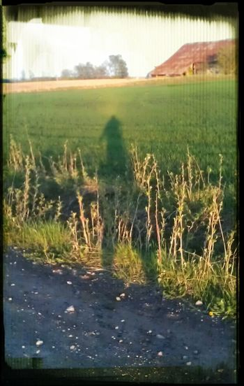 my shadow standing there, watching and wondering... are you going to do something...? Always By My Side Shadow- The Real Me!? The Follower Me And Me