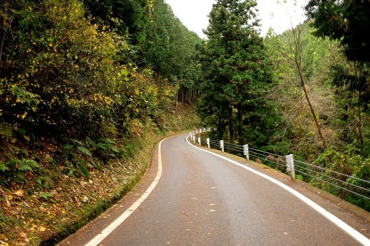 Road less travelled Travel Road Streetphotography Mountains Roadlesstraveled Empty Road Trees Peaceful Quiet