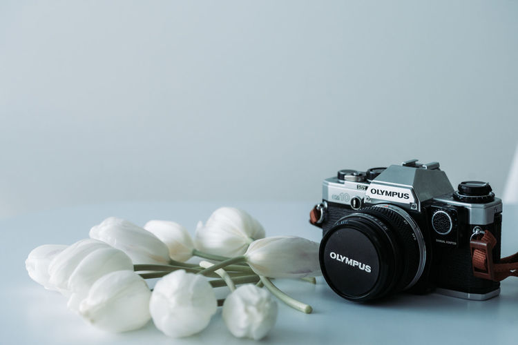 Photography Themes Camera - Photographic Equipment Copy Space Still Life Indoors  Technology Flowering Plant Flower Photographic Equipment Gray Background Close-up No People Plant Beauty In Nature Lens - Optical Instrument Gray Nature Studio Shot Table Digital Camera SLR Camera Tulip
