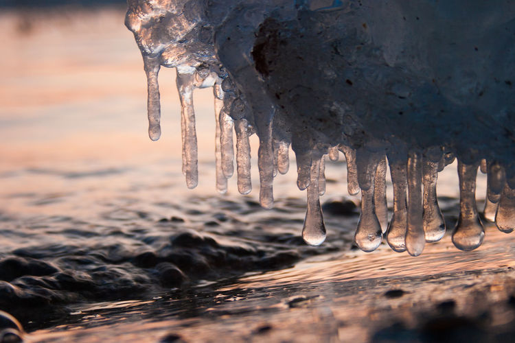 Close-up of icicles on frozen lake during sunset