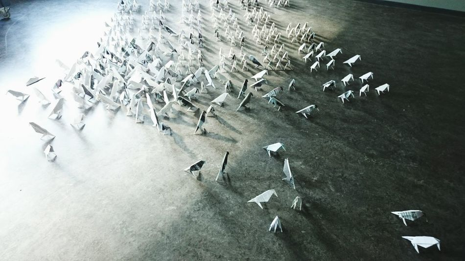 Paperdolls Birds rietveld Shadow Stand Out From The Crowd
