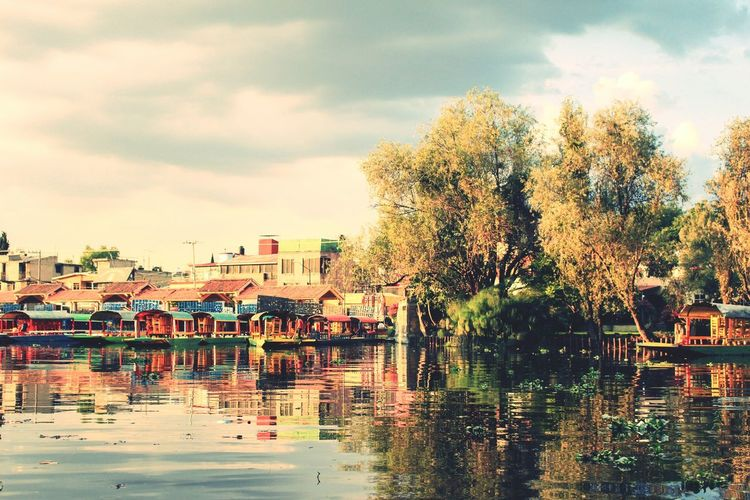 Floating gardens of XochimilcoEyeEm Selects Travel Photography Adventureculture Exploretheworld EyeEm Gallery Waterways Colour Boats Floatinggarden Xochimilco Mexico Travel Ancient Ancientcanals Vibrant