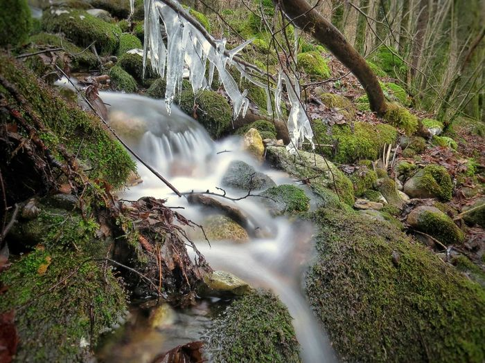 Waterfall Beauty In Nature Nature Scenics No People Outdoors Tree Blurred Motion River Forest Day Freshness Italy motion Long Exposure Water