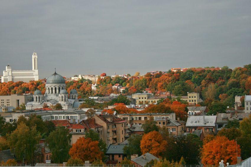 Lithuania City City View  Kaunas City Kaunas No People Autumn Colors Tree Autumn Leaves Colors Autum Colors Easterneurope