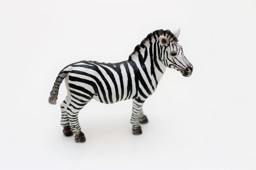 Schleichtiere Zebra Childrens Toys Hartgummi Spielzeug Schleich Schleich Animals Schleich Tiere Schleichtiere Schleichtiere Spielzeug Schleichtiere Toys Schleichtiere Zebra Spielzeug Spielzeug Tiere Spielzeugfiguren Spielzeugfotografie Spielzeugtiere Toyphotography Toys