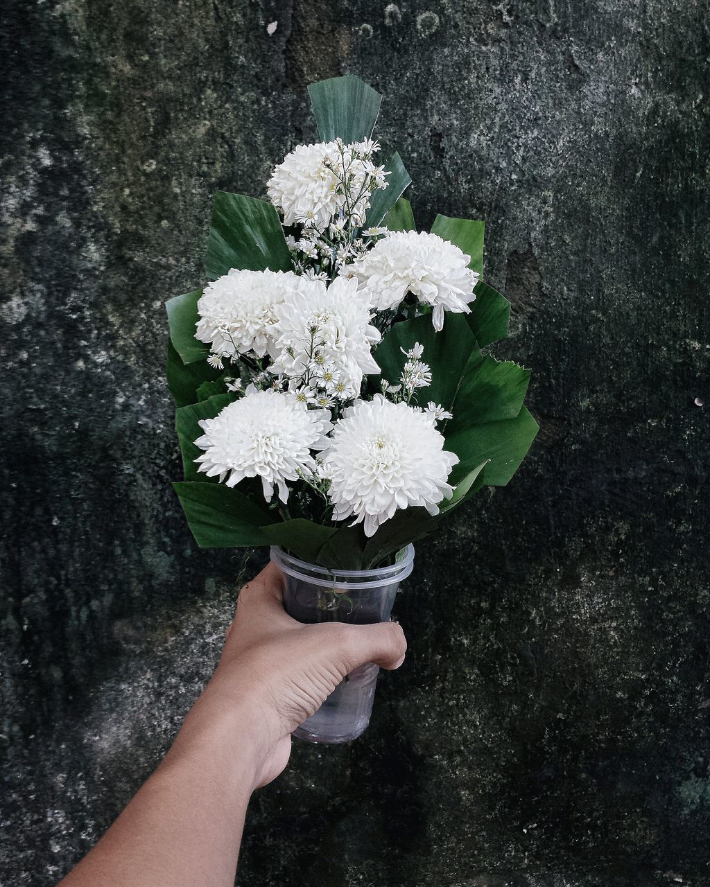 human hand, human body part, holding, flower, real people, white color, one person, freshness, outdoors, nature, fragility, day, flower head, beauty in nature, close-up, people