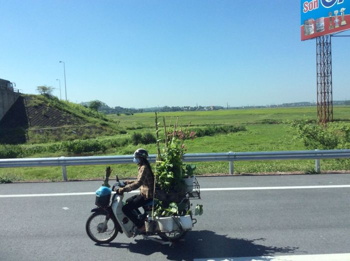 Mobile garden Transportation Road Clear Sky Sky Land Vehicle Motorcycle Mode Of Transportation It's About The Journey