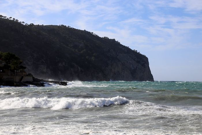 Balearic Islands Mediterranean  Andratx Camp Del Mar Mediterranean Nature Mallorca Mediterranean Sea Wild Sea Waves Crashing Waves Rolling In Waves And Rocks Waves Crashing On Rocks Pine Tree Baleares Balearic Mallorcaisland Mallorca (Spain)