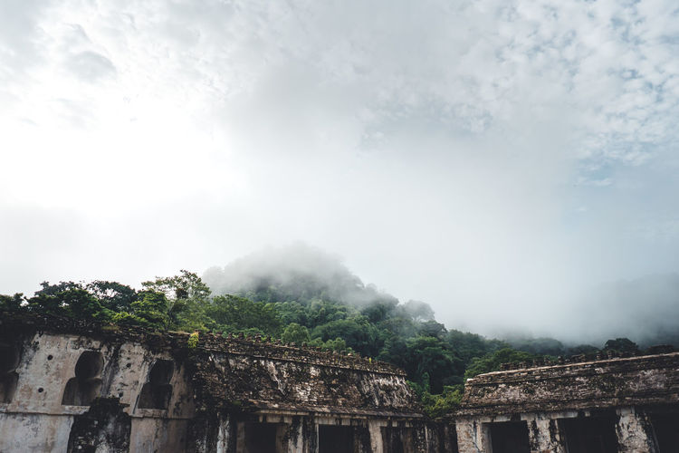 Architecture Tree Sky Plant Nature Built Structure Fog Cloud - Sky Day History The Past Mountain No People Building Exterior Tranquility Beauty In Nature Travel Destinations Outdoors Scenics - Nature Ancient Civilization Maya Mayan Ruins