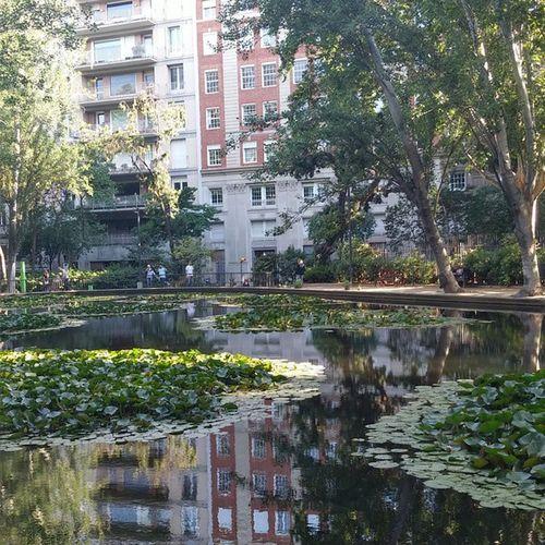 Turopark Barcelona Bcnexploradores Bcnexplorers Thebarcelonist Pond Estanque Reflections Reflejos Water Agua Park Puisto Parque  SPAIN