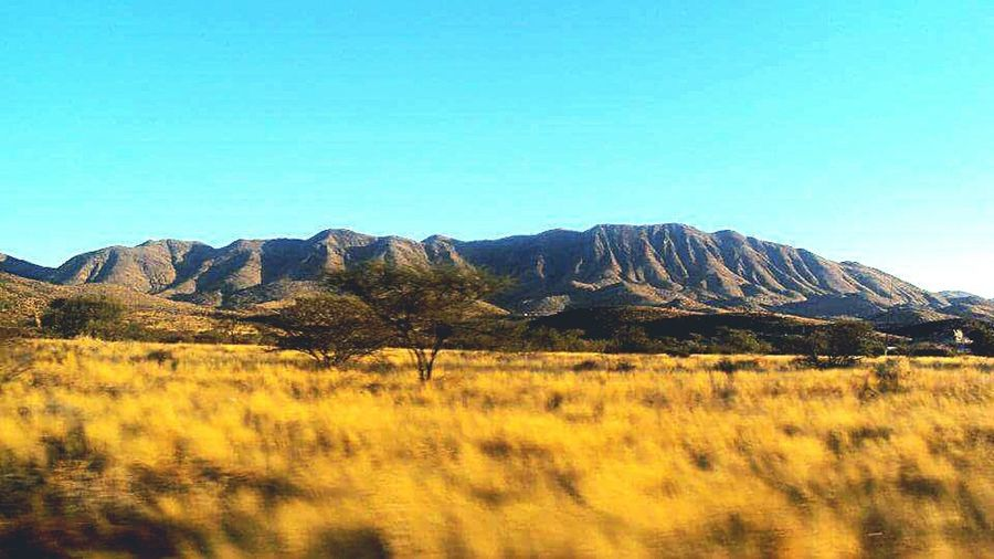 Protecting Where We Playthe African savanna