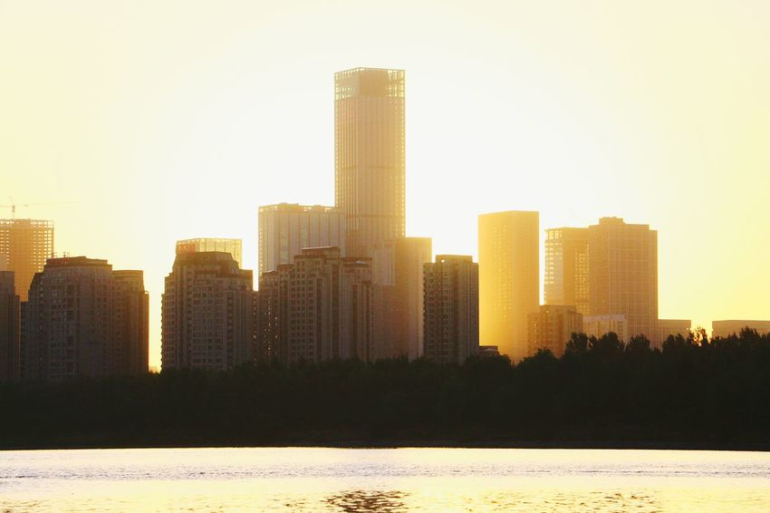 Skyscraper Sunset Urban Skyline Architecture Cityscape City Modern Building Exterior Downtown District Tourism Business Finance And Industry Yellow Outdoors Sun Sky Growth No People Travel Destinations Day Tree