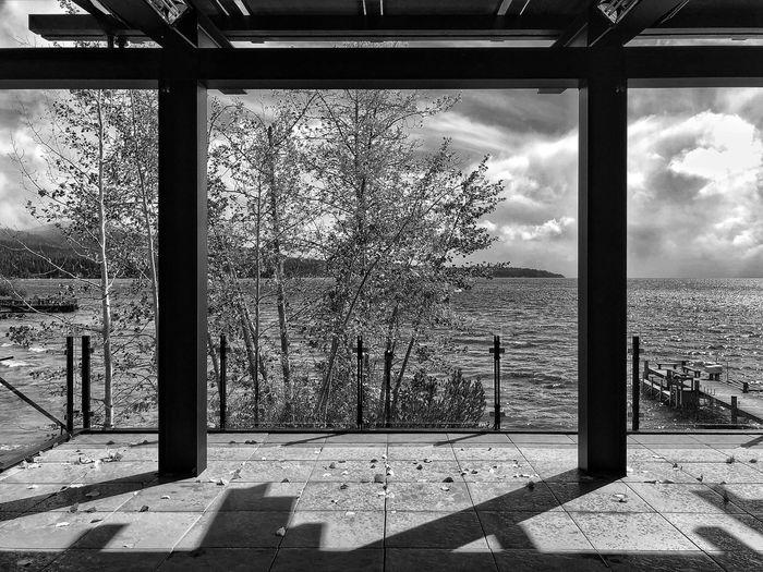 Plants by window against sky