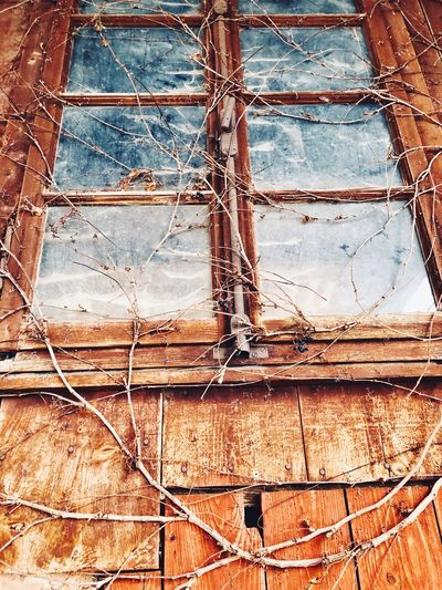 Closed window Window Abandoned Damaged Weathered Day No People Rusty Architecture Bad Condition Low Angle View EyeEmNewHere