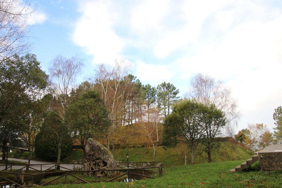 Duck Galicia Galicia Calidade Galiciameiga Horse Paradise Park River Trees