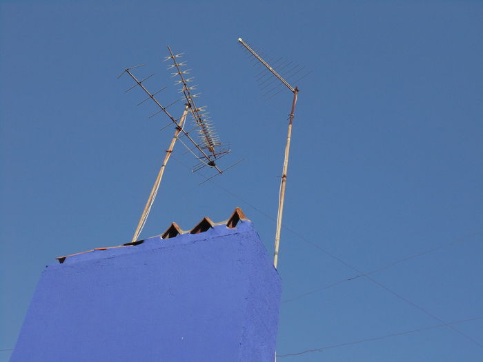Animal Themes Architecture Bird Blue Built Structure Clear Sky Day Low Angle View Nature No People Outdoors Perching Sky Television Aerial