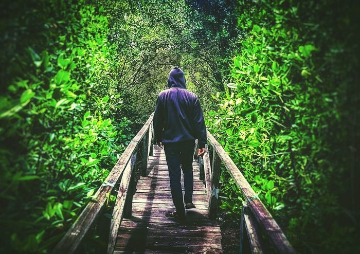 Just walk away.. Style Hello World Taking Photos Capture The Moment Balikpapan Check This Out Peaceful Enjoying Life Phone Photography EyeEm Best Shots Mobile Photography EyeEm EyeEm Indonesia Mobilephone Photography Nature Green EyeEm Nature Lover Flora Mangrove Forest Mangroves