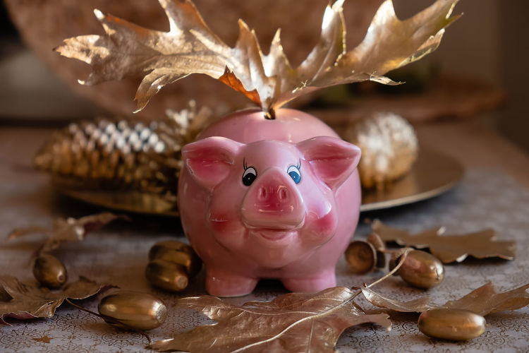 Piggy bank with golden leaves,acorns and cones Representation Still Life Close-up Table Indoors  No People Pink Color Finance Savings Art And Craft Investment Creativity Piggy Bank Human Representation Selective Focus Holiday Decoration Leaf Focus On Foreground Chinese New Year Gold Colored Leves Acorn Cones EyeEm Selects