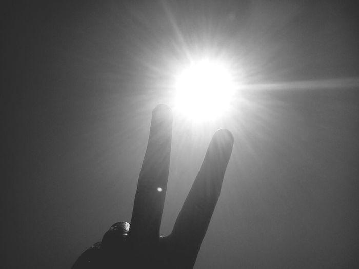 Don Filter Sunbathing Enjoying The Sun Escaping