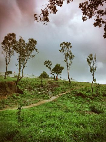 Nature On Your Doorstep 80 Kms from city of Bangalore are the Nandi hills. Perfect getaway from hustle of the city. A short drive and the nature welcomes you with clouds, hill tops, wildlife and the rain :) Rainy Days Hilltop Trekking Picnic Relaxing Hugging A Tree Escaping Walk This Way Sweet Getaways