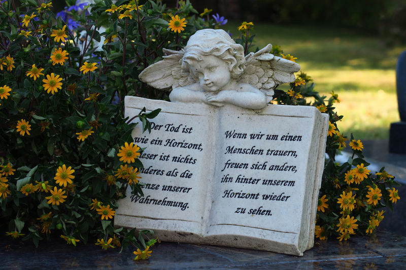 Friedhof Stein Trauer Andacht Beauty In Nature Buch Cemetery Close-up Day Engel Figur Flower Flower Head Fragility Freshness Grave Graveyard Growth Leaf Memorial Nature No People Outdoors Petal Plant Ruhe Sculpture Statue Tombstone