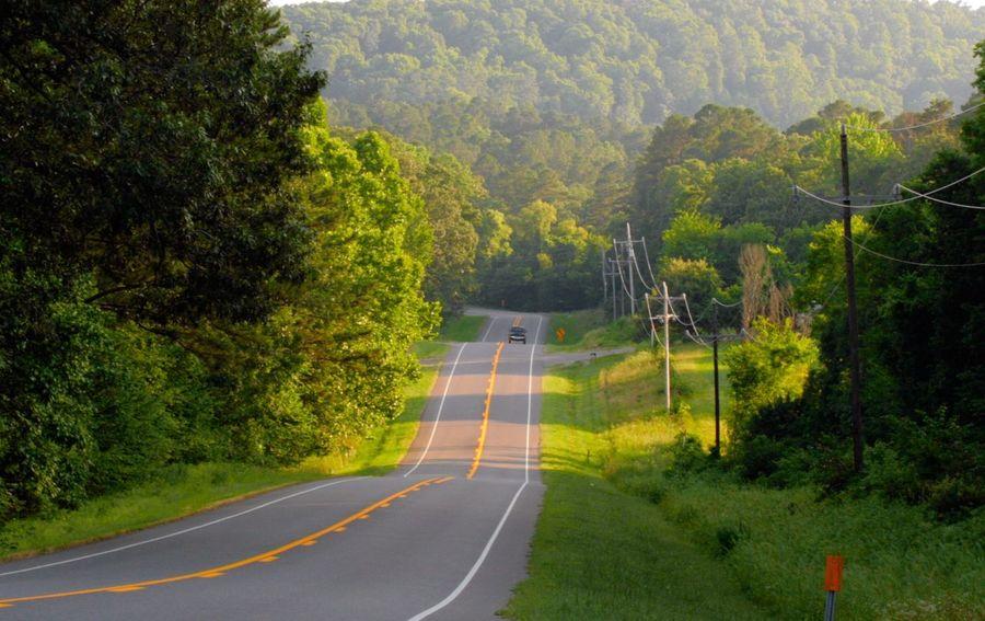 Original Experiences Open Road Nature Ouachita National Forest Arkansas Trees Car On Road Canon Rebel Xti