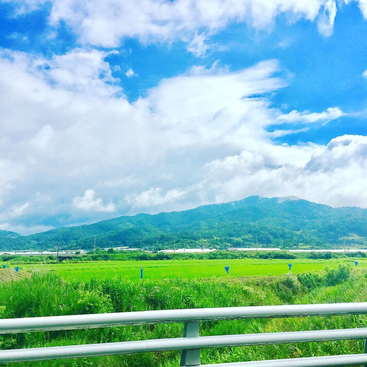 sky, scenics, field, landscape, cloud - sky, nature, no people, agriculture, beauty in nature, tranquil scene, day, mountain, tranquility, rural scene, grass, green color, outdoors, mountain range, tree