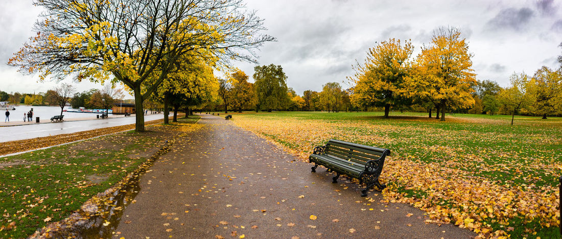 Autumn Autumn Colors Autumn Leaves Bench City Of London EyeEm LOST IN London London Autumn Autumn🍁🍁🍁 Beauty In Nature Cloud - Sky Day Green Color Hyde Park Leaf Leaves Mood Nature No People Outdoors Park - Man Made Space Scenics Tree