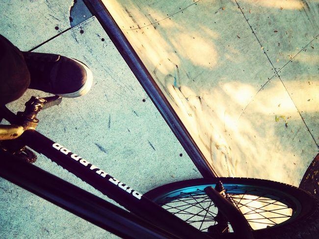 BMX Halfpipe Almond First Eyeem Photo Bmx Is My Life Wethepeople Almond