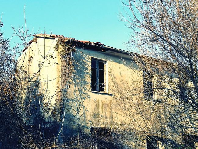 Window No People Sky Low Angle View Clear Sky Day Tree Outdoors Close-up Nature Beauty In Nature Detail Abandoned House Desolate Scene